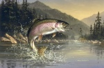 jumping-trout-pic