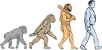 80345406-stock-vector-drawing-sketch-style-illustration-showing-human-evolution-from-primate-ape-homo-habilis-homo-erectus