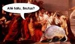 ate_tatu_brutus