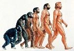 evolucija44