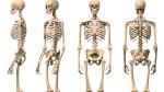 Traumatologia_y_Ortopedia-Cirugia_ortopedica_y_traumatologia-Enfermedades-Salud_249987587_48357694_1024x576
