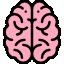 022-brain-3