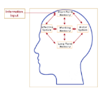memory systems used when learning
