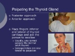 Palpating+the+Thyroid+Gland