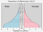 Piramide dell'età