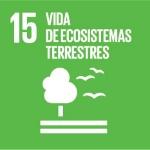 S_SDG_Icons-01-15