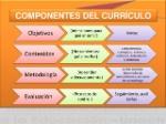 componentes-del-curriculo-8-5-638