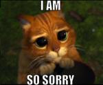 I-m-sorry-meme-generator-i-am-so-sorry-6cb84e