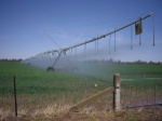 irrigration
