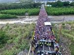 venezolanos-en-Colombia-1