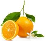 citrico
