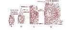 2F5224E7-3C9A-401B-B234-6A46CF0E9906