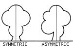 Asymmetric_(PSF)