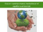 los-beneficios-del-kiri-en-el-medio-ambiente-12-638