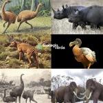 lista_de_animales_extintos_por_el_hombre_1166_600