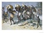 captured-slave-gang-of-coimbra-a-portuguese-mulatto-slaver-of-bihe-angola