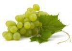 zielone-winogrona-300x211