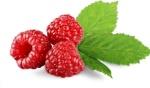 owoce-malin-329640-article