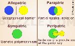 1200-598178-4-basic-modes-of-speciation