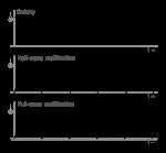 1200px-Current_rectification_diagram.svg