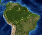 Амазонская