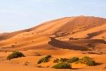 desierto-sahara-naturaleza