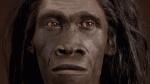 Evolucion_humana-Ciencia_286487551_66532601_1024x576