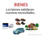 bienes (1)
