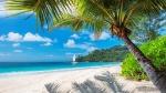 Tropics_Coast_Sand_Palms_Beach_553294_2048x1152