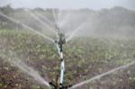 irrigation-588941_1280