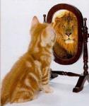 el-gato-y-el-leon_m