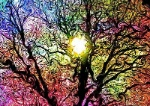 Print-Art-POSTER-CANVAS-Colorful-Abstract-Psychedelic
