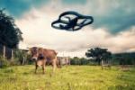 DronCompany-Drones-Field-696x464