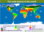world-map-biomes-