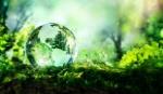 Una-Giornata-mondiale-dellambiente-per-connettere-le-persone-alla-natura