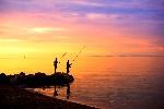 Canne-da-pesca-Shimano-surfcasting