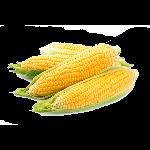 corncluster