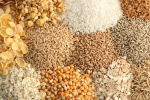 Complete-list-of-grains-and-pseudograins-1200x800_c
