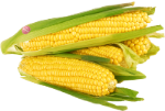 any-brand-packaging_corn