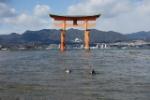 3.-Itsukushima-jinja