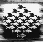 mc-escher-birds-to-fish