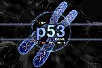 P53-GENE-Cover