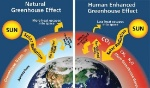 Greenhouse-effect (1)