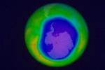 MIT-Healing-Ozone_0
