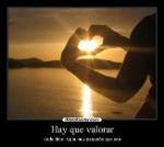 amor_87