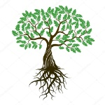 depositphotos_80213844-stock-illustration-vector-color-oak-tree-with