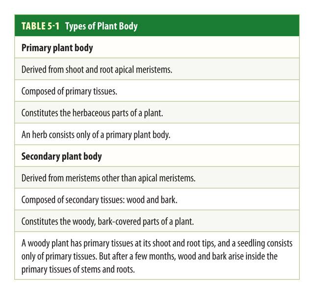 Botany Types of Plant Bodies Pic
