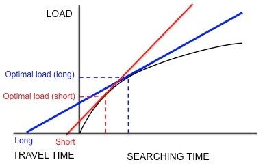 Botany Optimal Foraging Theory Pic 1