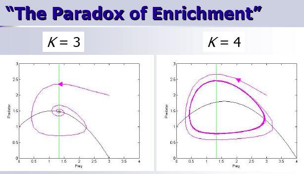 Botany Paradox of Enrichment Pic 1